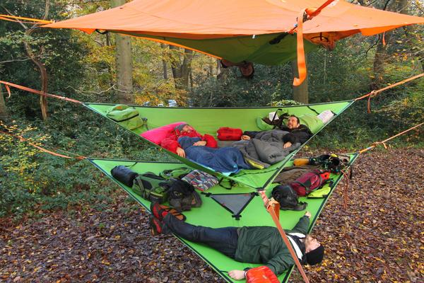 trillium-hammock