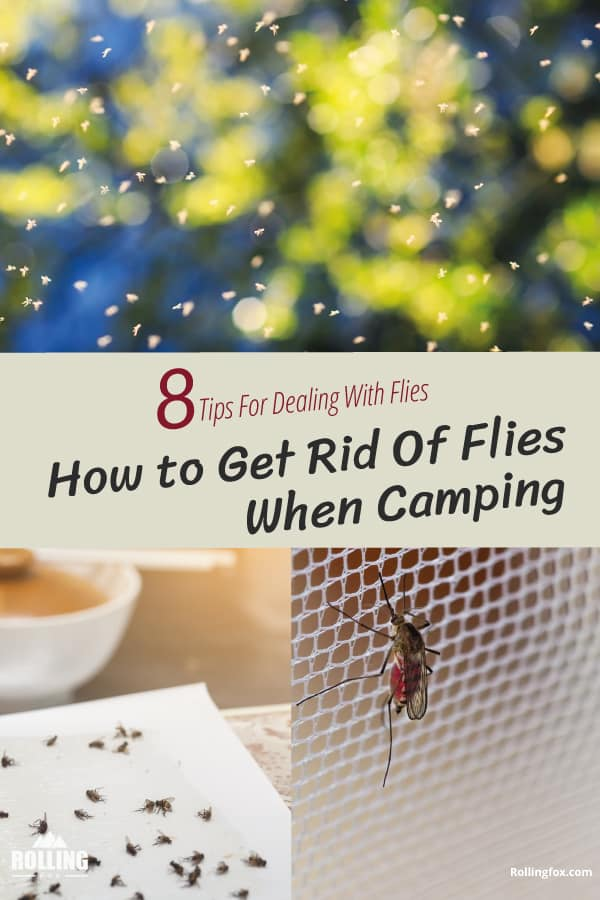 How-to-get-rid-of-flies-when-camping-pin